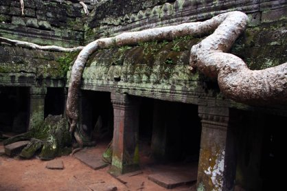 I was pretty amazed that the mega root system didn't crush the temple complex!