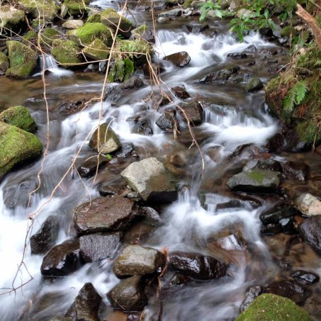 I love to listen to the sounds of gentle streams.