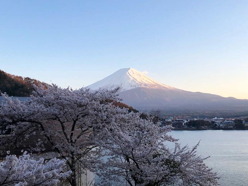 Mt-Fuji_Japan_Sharingourtravelstories_9807C