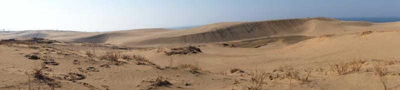 Tottori-Sand-Dunes_Japan_Sharingourtravelstories_0325