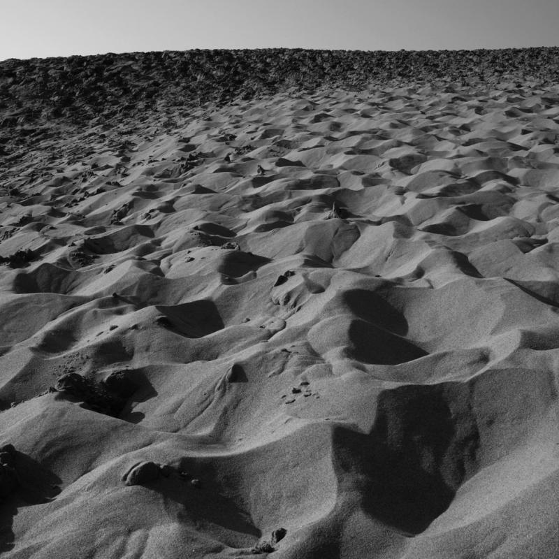 Tottori-Sand-Dunes_Japan_Sharingourtravelstories_8192