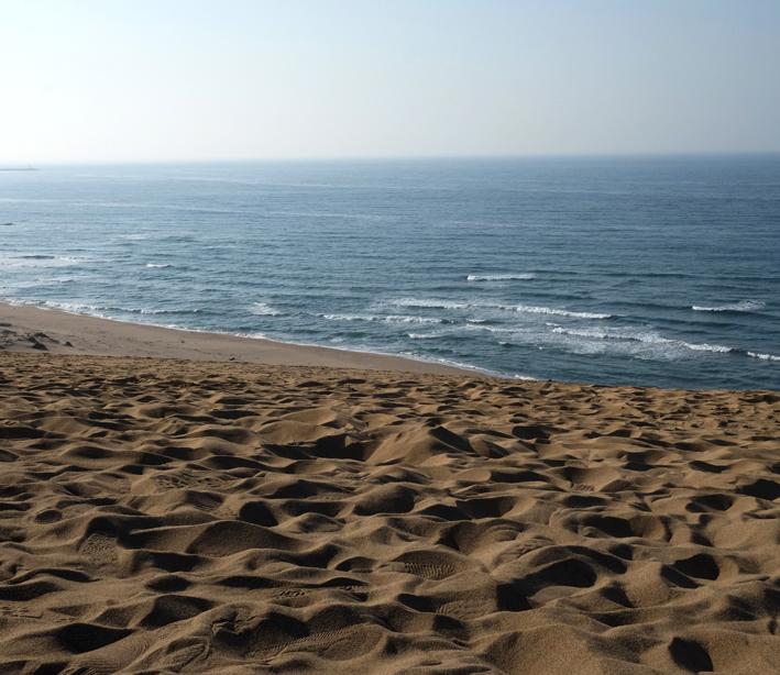 Tottori-Sand-Dunes_Japan_Sharingourtravelstories_8193