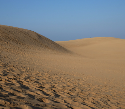 Apparently, the sand dunes are created by continuous sediment deposits carried from the Chūgoku Mountains nearby.