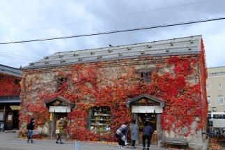 Funky and natural buildings in Otaru