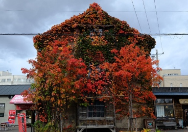 otaru_hokkaido_japan_autumn_sharingourtravelstories_2019_5